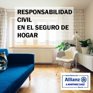 RESPONSABILIAD CIVIL EN EL HOGAR